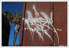 Paser (All Seeing) Tags: mfk floater