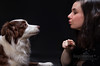 Natalia and her best friend (Sagittarius_photography) Tags: dog bordercollie friend animal girl family