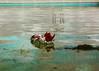 Ellanore011617-19 (MegzyTred) Tags: megzytred beta betafish viking funeral vikingfuneral fishfuneral deadfish goodparenting doingmybest kidsareweird lifeisstrange majesticfishfuneral majestic fish flames fire tinfoil foil boat water cremation burial burialatsea