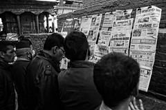 Free Press (Steve Mitchell Gallery) Tags: people men news newspapers spread disseminate publish street travel kathmandu katmandu nepal