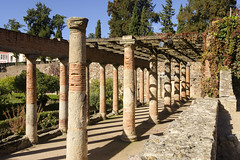 Roman Columns (rschnaible) Tags: merida spain espana europe roman ruins old ancient history historic circa bc building achitecture sightseeing tour touring tourist outdoor columns 1516