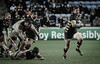 Elliot Daly spots a gap and takes his chance for Wasps first try (davidhowlett) Tags: toulouse rugby wasps coventry ricoh championscup
