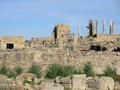 Ruins, view to Basilica and Capitol, Volubilis, Morocco (Paul McClure DC) Tags: morocco almaghrib fèsmeknèsregion volubilis jan2017 roman architecture historic