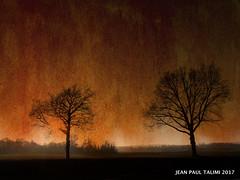 Le soleil couchant (JEAN PAUL TALIMI) Tags: france exterieur extérieur talimi texture appoigny yonne bourgogne arbre nature rouille campagne campagnebourguignonne coucherdesoleil ciel et automne hiver silouettes noir