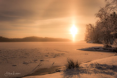 Winter Halo / Flames Of Glory (Fredrik Lindedal) Tags: sunhalo snowhalo halo sun sunlight warmlight winter winterland nature lake landscape trees shadows ice frozen snow tripod iamnikon fredriklindedalse sky skyline sweden sverige calmness harmony happy lights colors orange
