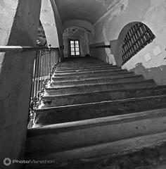Martellozzo_Mauro_11