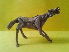 Horselaugh - Kunsulu Jilkishiyeva (Carla Godoy) Tags: horse origami horselaugh kunsulu jilkishiyeva