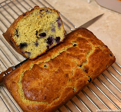 grain free blueberry bread Putting Positives Together (The Redhead Riter / Sherry Riter) Tags: perspective attitude choice ptsd thebigpicture selfawareness selfknowledge makingchoices knowingyourself steppingback selfknowing seeingthebigpicture knowledgeandchoice knowledgeandperspective knowledgeablechoices