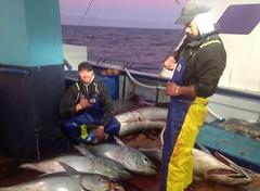 Jayden Kramer with some tuna in Whakatane, NZ. #tuna #fishing #catchoftheday #Stormline #stormlinegear