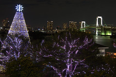 Christmas in Odaiba?
