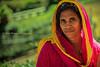 Pink.    Ooty (Claire Pismont) Tags: asia asie inde india travel travelphotography tamilnadu pismont portrait pink clairepismont colorful couleur color colour ooty ootacamund woman viajar voyage veil voile