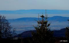 DSCN0832 (derudo) Tags: südschwarzwald stohren münstertal vogesenblick blickindierheinebene