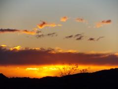 alba dalla finestra (memo52foto) Tags: alba brianza lombardia lombardy lombardie lombardei aube tagesanbruch morgenrote morgenstunde madrugada sunrise dawn