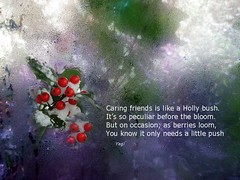 Friendship (yagisu) Tags: pome hollybush friendship poem poetry homage frozen frosted friends freedom dof berries bokeh frost words window writting text winter winterfrost publicdomain xmas