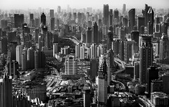 Shanghai take me higher (Rob-Shanghai) Tags: shanghai china modernchina mono leica m240 90mm cityscape dense towers puxi
