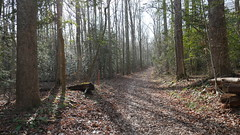 Cedarville (Maryland DNR) Tags: 2017 firstdayhike cedarville stateforest