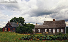 Ross Farm (sminky_pinky100 (In and Out)) Tags: novascotia canada travel tourism omot cans2s historical heritage scenic rossfarmmuseum newross barn workshop farmhouse