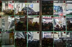 (Cosmic Oxter) Tags: glass cubes candy store shopkeeper side throughglass street storewindow man