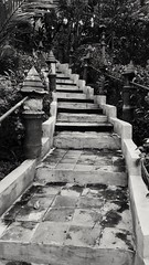 A stairs that leads to our different path and destiny. (vivien.villaruz) Tags: up stairs random beutiful