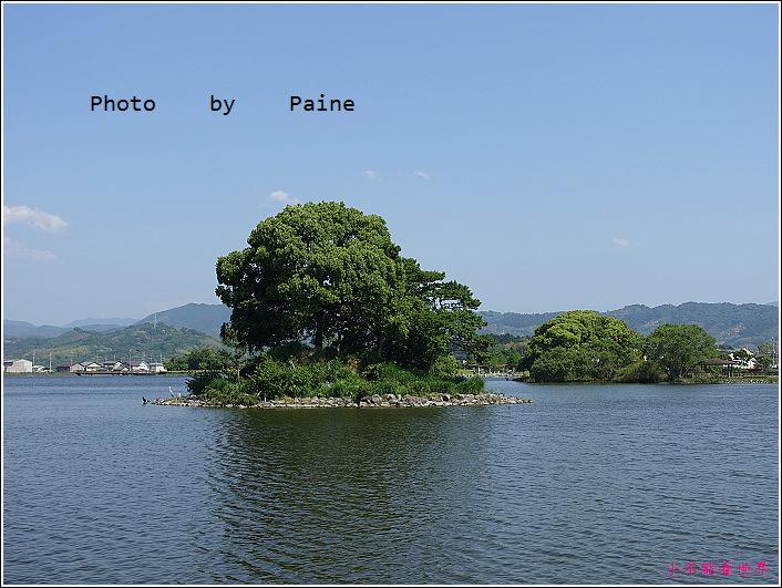 和歌山大池遊園-平池綠地公園 (26).JPG