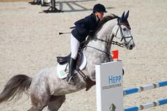 IMG_2016 (dreiwn) Tags: horse horseshow equestrian horseback reiten horseriding showjumping gelnde eventing marbach reitturnier vielseitigkeit reitsport pferdekopf pferdesport springreiten reitplatz gelndestrecke eventingmarbach