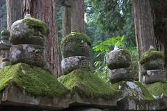 Mossy statues, Oku-no-in Koya-San