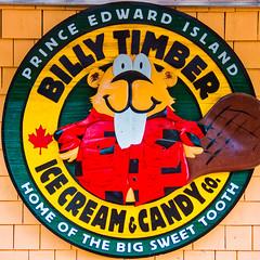 BILLY TIMBER