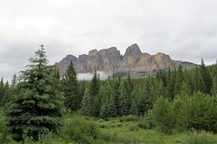 A Very Low Cloud at Castle Mountain (Patricia Henschen) Tags: banffnationalpark banff nationalpark parkscanada park parcs parks alberta canada trees clouds boreal forest rockies canadian northern canadianrockies bow bowvalleyparkway roadside mountains mountain castlemountain