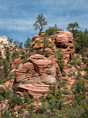 Checkerboard Mesa, Utah, USA (Cwep) Tags: rockformations usa utah location checkerboardmesa 2011 slickrock