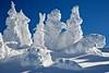 Snow Ghosts (SteveD.) Tags: ski skiing stevedunleavy snow powder tahoe laketahoe laketahoewinter winter powderday blizzard