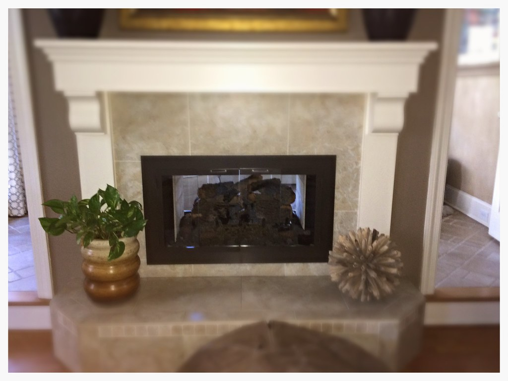 Design Specialties Carolina Fireplace Doors. Chattanooga, Tn.