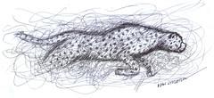 leopardo a lapicero (ivanutrera) Tags: draw dibujo drawing dibujoalapicero animal wild wildlife sketch sketching leopardo lapicero boligrafo pen felino dibujoaboligrafo