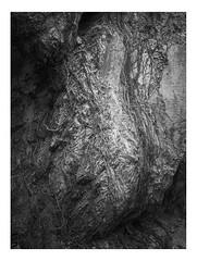 Valle dei Tre Santi, Sibillini Mountains, Italy (pietrowsky) Tags: landscape blackandwhite monochrome italy macerata marche sibillini national park valle tre santi kodak trix 400 medium format fuji ga645 analogue fineart darkroom filmisnotdead rock plant root abstract paesaggio biancoenero black white bianco nero italia parco nazionale medio formato analogico camera oscura pianta radici roccia montagna mountain astratto