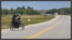 Nervous (Note-ables by Lynn) Tags: road highways greycounty mennonites horseandbuggy ontario rain umbrella