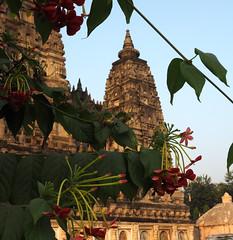 "PB140661-a (photozaki) Tags: india ""sujata kuti"" ""mahabohi temple"" ""mahabodhi mahavihara temple ""buddhist buddha buddhism ""bodhi tree"" bodhgaya gaya buddhist monk monks ashoka enlightenment ""vajrasan diamond throne"""