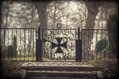 Kadettenfriedhof Plön (LB-fotos) Tags: deutschland friedhof germany graveyard kadettenfriedhof plön prinzeninsel bokeh wideopen