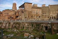 Rome 2010 1686