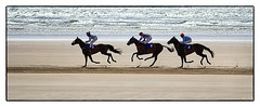 Minus 2 (Frank Fullard) Tags: ocean ireland horse irish color colour beach strand race fun surf mayo gamble bet doolough geesala