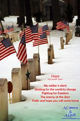 Veterans Cemetery (casarahnance) Tags: county camera winter lake cemetery poetry clare poem harrison thomas flag houghton quill poetryart nance veteranscemetery roscomon casarah acameraandaquillcom
