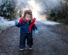 Careful First Winter Steps (westcoastcaptures) Tags: child winter snow ice boy toddler walking sonya99 sigma50mmf14dgex