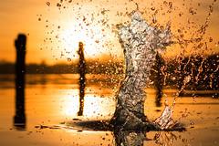 Liquid (--Conrad-N--) Tags: scharmützelsee saarow sony sunset splash water dof drops