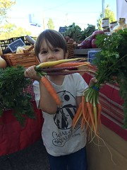 "carrot farmer • <a style=""font-size:0.8em;"" href=""http://www.flickr.com/photos/75400798@N04/31570033324/"" target=""_blank"">View on Flickr</a>"