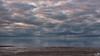 No waves no sunset, just clouds (BraCom (Bram)) Tags: bracom cloud wolk sea zee bird calm kalm vogel meeuw seagull reflections spiegeling beach strand horizon ouddorp noordzee northsea brouwersdam goereeoverflakkee zuidholland nederland southholland netherlands holland canoneos5dmkiii widescreen canon 169 canonef24105mm bramvanbroekhoven nl