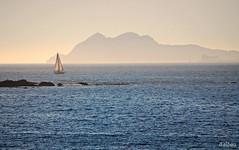 Sailing (Franco D´Albao) Tags: francodalbao dalbao nikond60 mar sea sailing navegando velas sails ríadevigo galicia illadofaro cíes atlántico barco boat vigo cormoranes cormorants