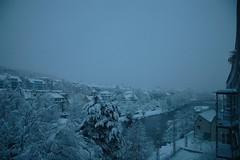 sunday, and even more snow (Dreamer7112) Tags: winter snow 20d schweiz switzerland europe suisse suiza canon20d zurich canoneos20d snowing zrich svizzera zuerich winterwonderland eos20d zurigo latemarchsnow