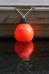 (eva8*) Tags: orange water wow mouse coast dock maine lookatme buoy boothbay eva8 buoyant 200mm28