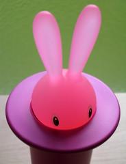 Stefano Giovannoni's Magic Bunny (bobo.ling) Tags: pink rabbit 1025fav toothpick 110fav phaif