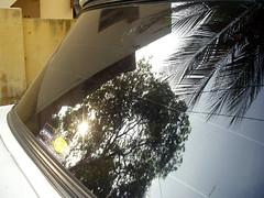 Nature Paints the Car (Kamala L) Tags: blue sky sun india reflection tree green car catchycolors leaf coconut judgementday38 rearglass yellowstickerlabel reflectionofpartofbuilding electiriccables