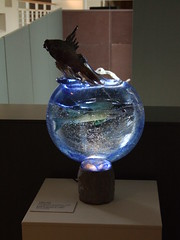 A leaping fish