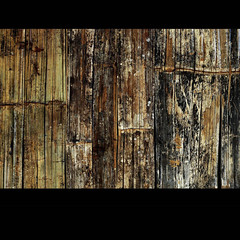 Bamboo Wall (Yorick...) Tags: wood texture graphic bamboo yorick